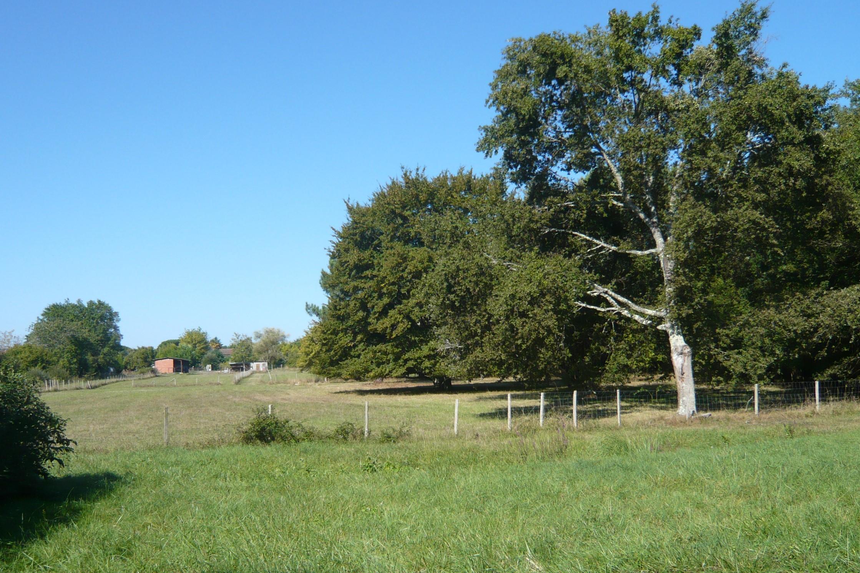Aménagement du teritoire - Préservation d'ilôt de biodiversité