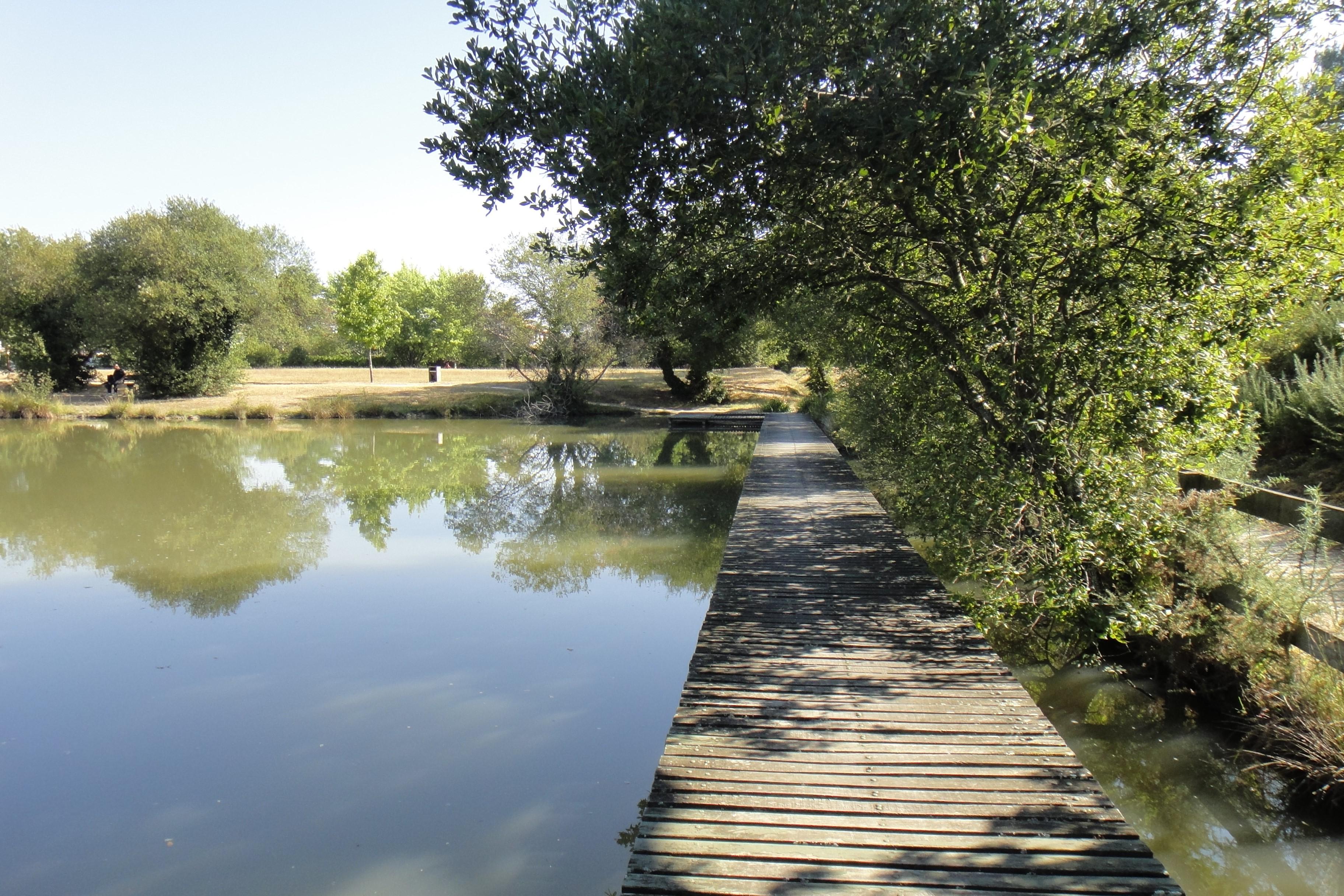Dossier réglementaire - Loi sur l'eau