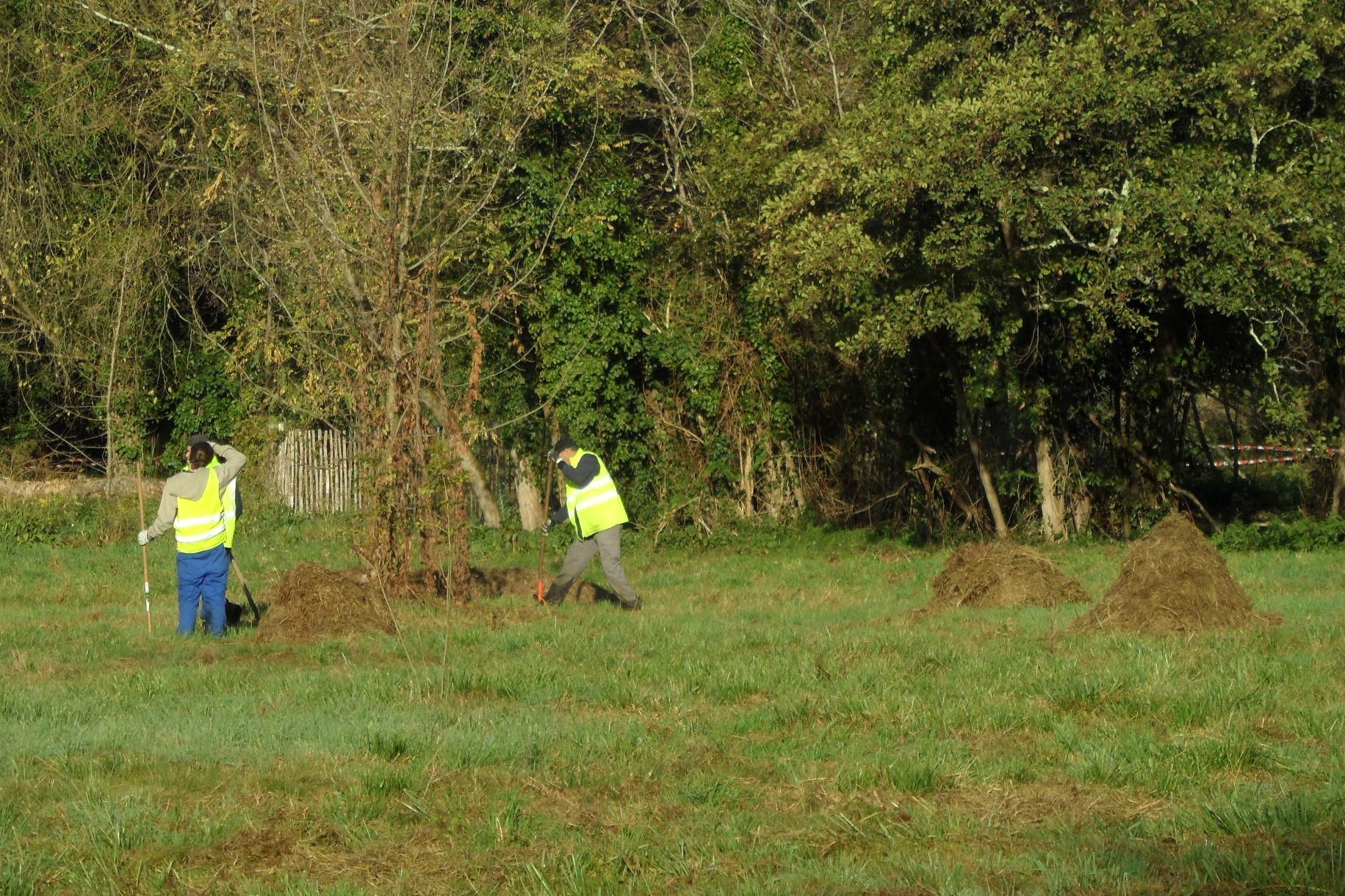 Restauration de zones humides - gestion différenciée